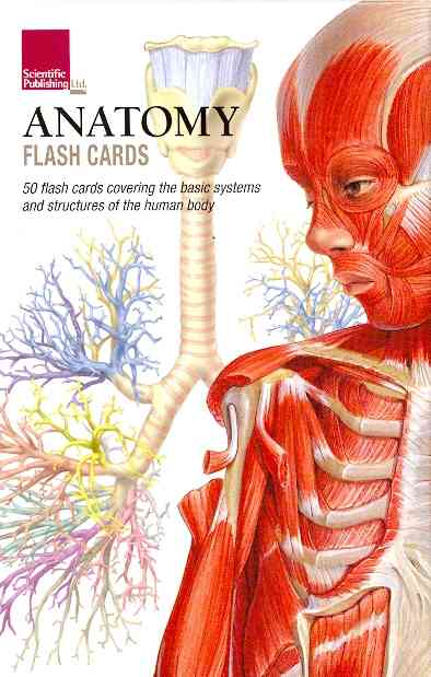Anatomy Flash Cards By Scientific Publishing (COR)
